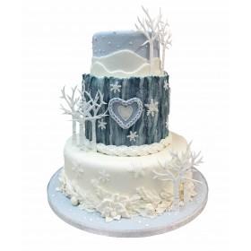 Торт на Новый год двухъярусный двухцветный
