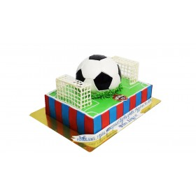 Торты на заказ в форме футбольного поля с мячом